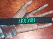 Zombie Killer ID Number Patch